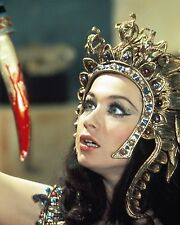 "Blood from the mummys tomb Valerie Leon 10"" x 8"" Photograph no 2"