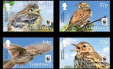 Guernsey 2017 Vogels    WNF  WWF       postfris/mnh