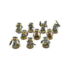 SPACE WOLVES 10 wolf guards or Grey hunters #1 PRO PAINTED Warhammer 40K