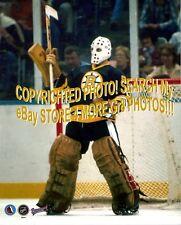 Tuukka Rask Boston Bruins Mask 8x10 11x14 16x20 photo 0990 Size 16x20