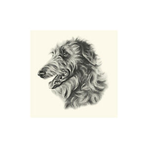 Dog Show Ring Number Clip Pin Breed - Deerhound Head