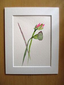 ORIGINAL ART - Pink lotus flower watercolour with mat board