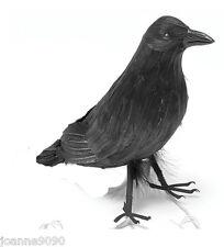 Halloween farcies plume plumes Crow Bird Blackbird Raven accessoire robe fantaisie