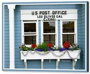 US Post Office Los Olivos Cal by Floyd Snyder Floral Flowers Canvas Giclee 24x36