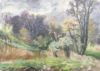 Ölgemälde Naturalist Johan Hansen Landschaft mit Baumblüte 47 x 66 Impressionist