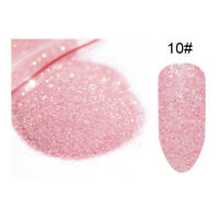 20g Fine Glitter Dust Powder Holographic Iridescent Metallic Body Nail Art Craft