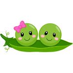 Sweet Peas General