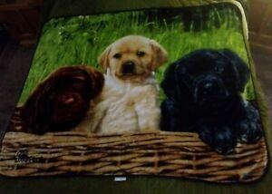Northwest Throw blanket Dogs Greg Cuddiford HTM Brown, White, Black 2018  50x 60
