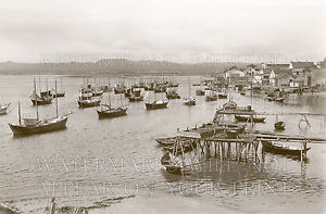 Fishing boats Barachois Gaspe Village Quebec PQ photo 5x7 or request digital CD