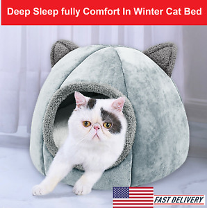 Cat House Deep Sleep Fully Comfort In Winter