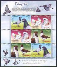Belarus 2011 Pigeons/Birds/Nature/Sports/Racing/Carrier/Pets 6v m/s( n33801)