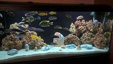 3 KG RED LIMESTONE OCEAN ROCK FOR MALAWI CICHLID AQUARIUM FISH TANK STONES