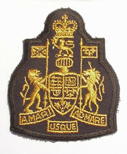OBSOLETE CANADA Canadian Armed Forces Army Chief Warrant Officer badge patch
