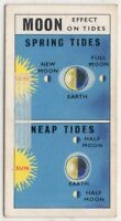Moon Effect On Spring and Neap Tide Solar Space Vintage Trade Ad Card