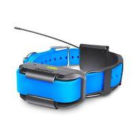 Dogtra Pathfinder Extra Collar Blue - PATHFINDER-RX-BLUE