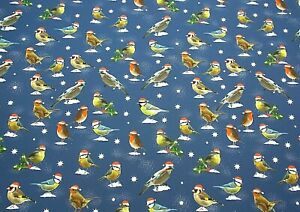 Christmas Xmas Blue Gift Wrap Wrapping Paper 2 Sheets 2 Tags Robins Garden Birds