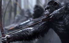 Plant of the Apes Poster Length :1200 mm Height: 700 mm  SKU: 1149