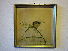 Schönes altes Vogel BILD handgemalt signiert, um 1950 im Holzrahmen Glas picture