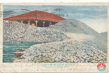 TX * Texas Oysters 1908   Large pile of Oysters  Post Card