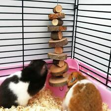Small Pig Newest Apple Wood Pets Chew Toy Sticks Guinea Rabbit for Hamster Twigs
