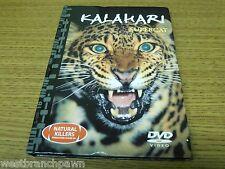 #10 Kalahari Supercat DVD / Book Natural Killers Predators Close Up Series