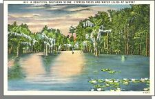 E6690: Southern Scene, Cypress Trees & Water Lillies at Sunset - Linen Post Card