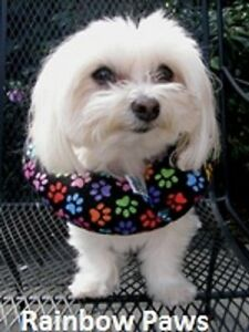 Puppy Bumpers® Keep Your Dog on the Safe Side of the Fence Rainbow Paws up to 10