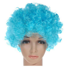 Curly Clown Wig Afro Fancy Dress Disco Party Costume Men Ladies Hair Color:  5E8