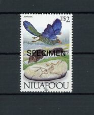 Niuafoou specimen!!! Dinosaurs Paleontology FOSSIL Archaeopteryx m1039
