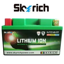 Skyrich HJTX14H-FP Batteria al Litio 12V - Verde