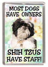 "Shih Tzu Dog Fridge Magnet ""Most Dogs ...... Shih Tzus Have Staff!"" by Starprint"