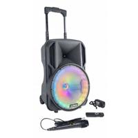 "Party 300W 10"" Portable PA Active Bluetooth Speaker System LED Light Karaoke DJ"