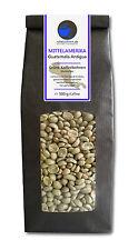 Rohkaffee - Grüner Kaffee Guatemala Antigua (grüne Kaffeebohnen 500g)