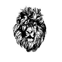 LION FACE African unmounted rubber stamp, wild animal, big cat #17