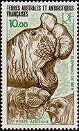 "TERRES AUSTRALES AERIENS N°55 ""FAUNE, ELEPHANT DE MER 10 F."" NEUF xx TTB"