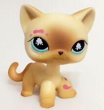 Littlest Pet Shop Messiest Cream Siamese Splash Cat Kitty Blue Eyes LPS E1