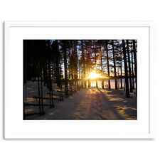 Photo Landscape Sunshine Winter Snow Forest Trees Framed Print 9x7 Inch
