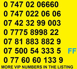 New Vodafone GOLD VIP BUSINESS EASY MOBILE PHONE NUMBER SIM CARD ee O2 Special