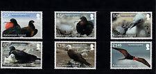 Ascension Island 2013 MNH Frigate Bird Return 6v Set Birds Nature Chick Eggs