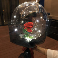 Enchanted Red Rose Flower In Balloon LED Light Xmas Wedding Valentine's Day Gift