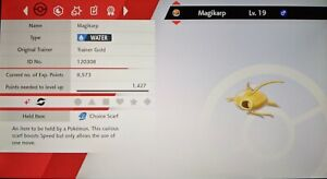 Shiny Gold Magikarp 6IV Max EVs Competitive Pokemon Sword Shield FAST DELIVERY