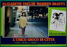 T22 FOTOBUSTA L'UNICO GIOCO IN CITTA' ELIZABETH TAYLOR WARREN BEATTY STEVENS 5
