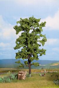 21780 Noch Serie profi albero di Tiglio altezza cm. 18