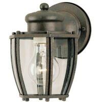Westinghouse 64689 One-Light Exterior Wall Lantern, Textured Rust Patina