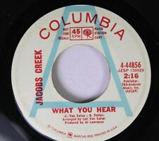 Rock Promo 45 Jacobs Creek - What You Hear / A Love Song On Columbia