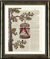 PAGINA LIBRO D'ANTIQUARIATO Art Print-BIRD Cage Albero Uccellini VINTAGE DIZIONARIO Wall Art
