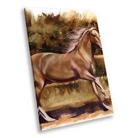 Animal Portrait Photo Canvas Picture Prints Wall Art Brown Horse Watercolour