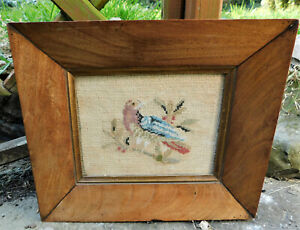NO RESV c1820 Georgian Embroidery Bird Portrait Antique Frame Miniature Folk Art