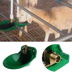 Pet Amniotic Water Trough Bowl Copper Valve Sheep Automatic Drinking Bowl MA