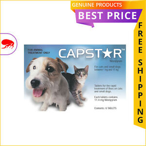 Capstar Blue for Small Dogs and Cats 0.5 to 11 Kg  Pack 6 Doses  Kill Fleas